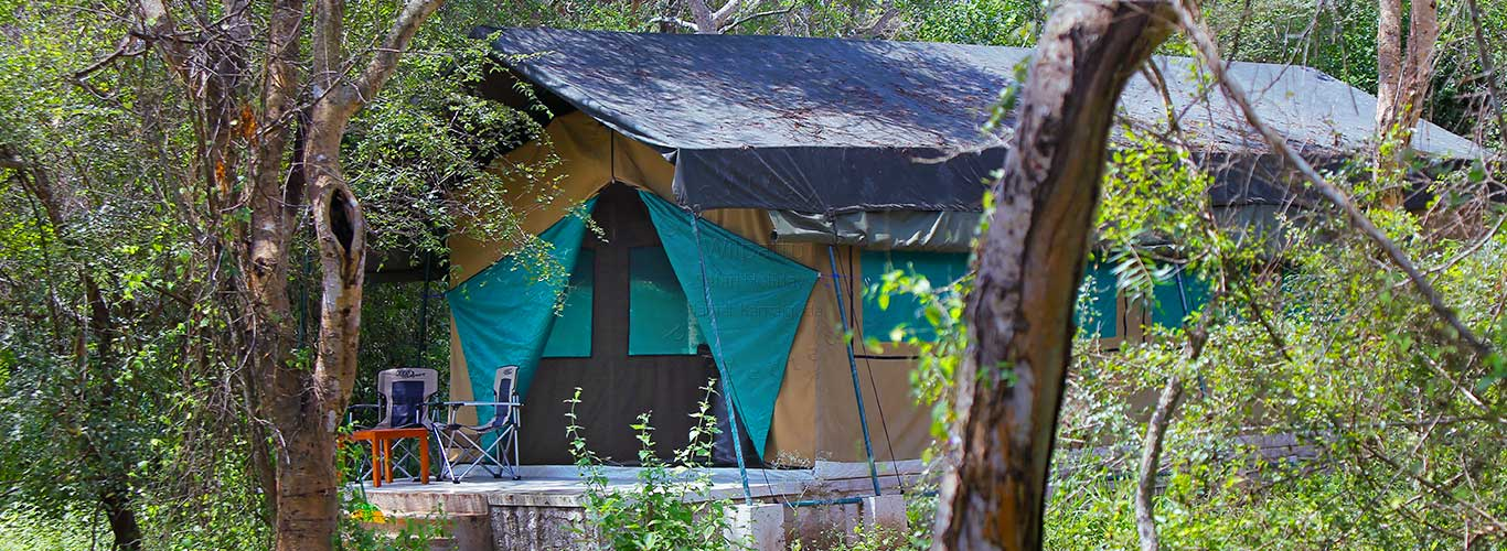 Wilpattu Safari Camp